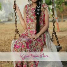 Stylish Beautiful Dress
