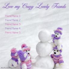 Love Crazy Friends