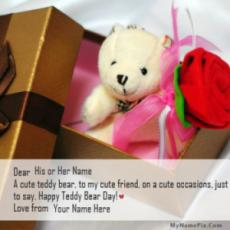 Teddy Bear Day Gift