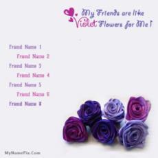 Voilet Friends