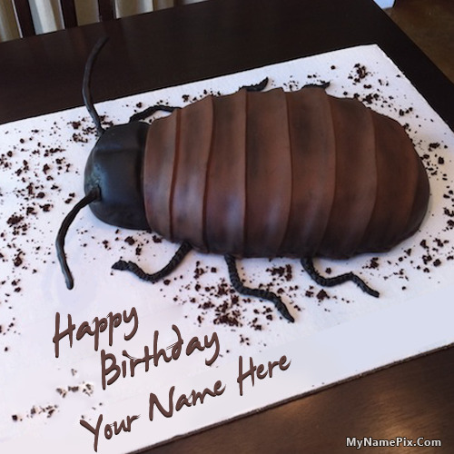 Cockroach Birthday Cake With Name