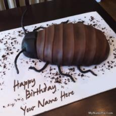 Cockroach Birthday Cake